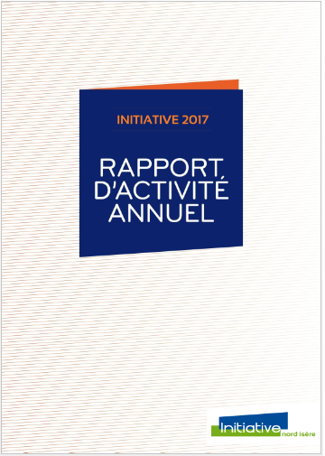 Picto_rapport-activite-2017.png